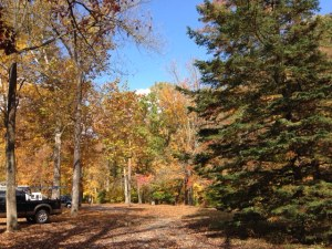 View of the Brandywine Creek Campground